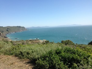 stinson beach coastline