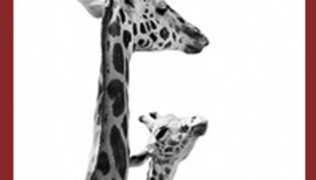 mothers-day-2015-giraffe