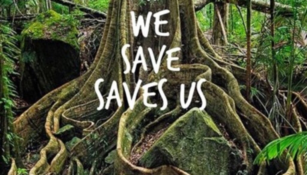 trees-what-we-save-saves-us